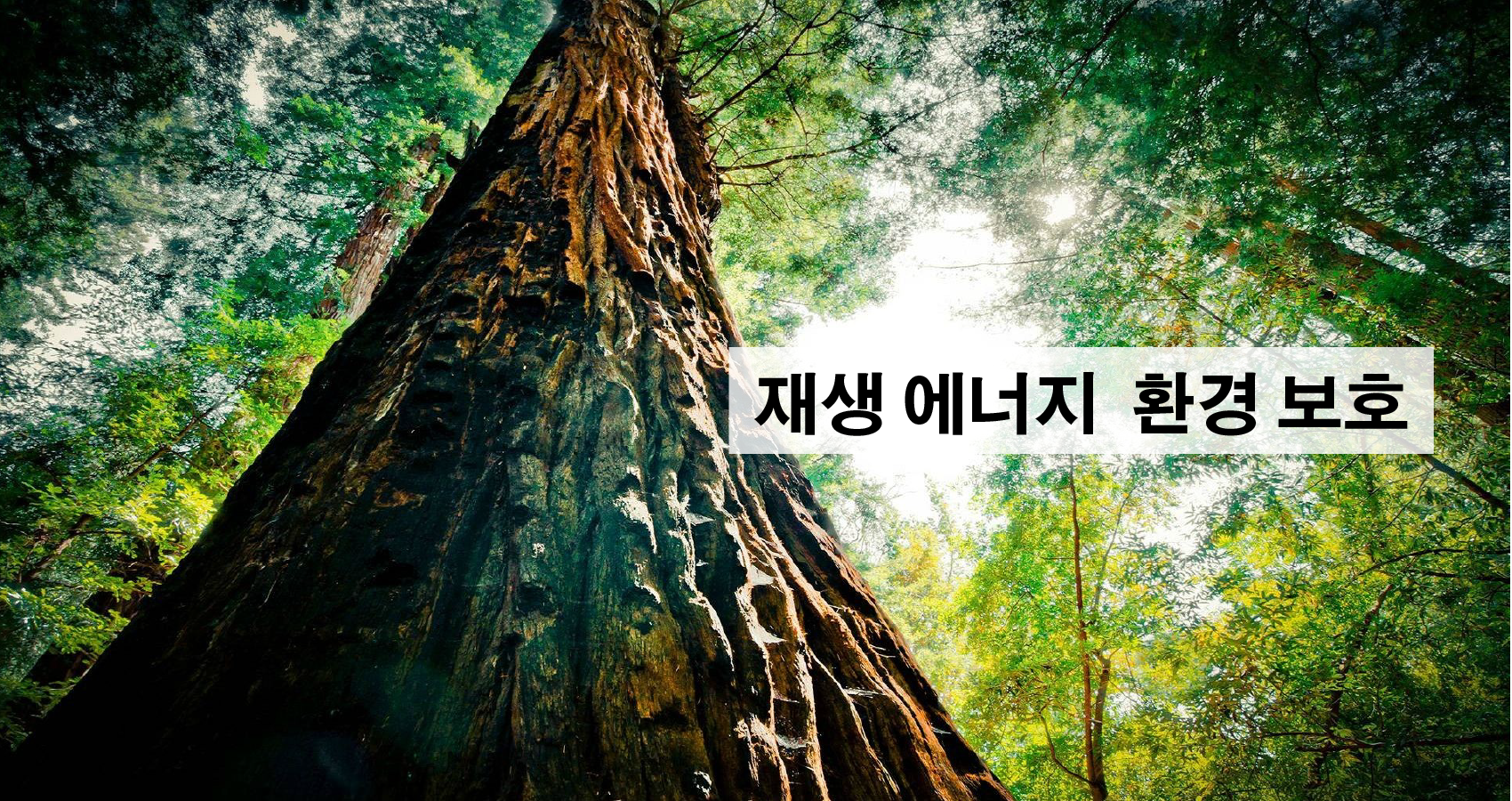 KOR.Banner__1700X900-01